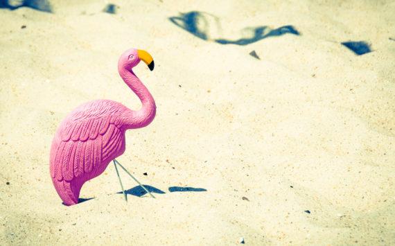 Przyszło lato – co robić, jak żyć?