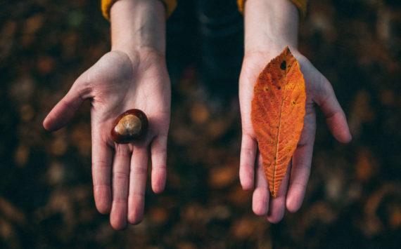 Przyszła jesień – co robić, jak żyć?